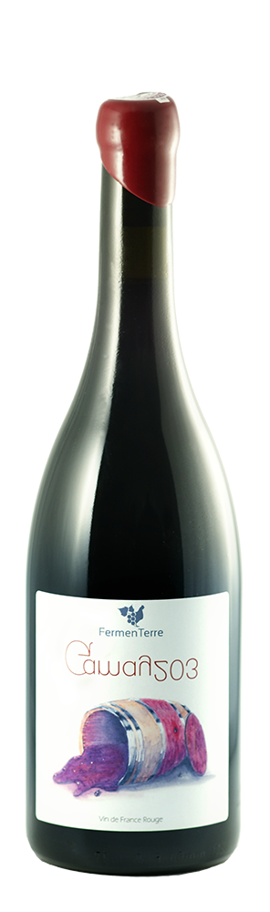 Gamay 203-Fermenterre-Victor Cossy